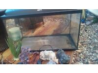 2foot fish tank with internal lights ornaments heater andfilter