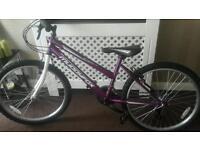 Girls Purple and White 24inch bike! Brand New!