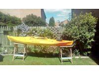 Kayak Robson waikiki