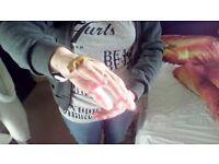 1yr old crested gecko
