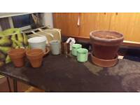 Plant pots job lot