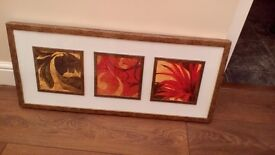 Frame featuring three floral images in red, yellow and green
