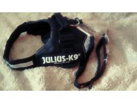 Julius k9 dog harness ezydog lead