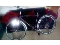 Universal Rayleigh bike