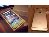 Iphone 6 Gold 16gb any network