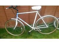 Vintage Raleigh pioneer hybrid bike large frame