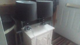 Two Large Lamps Bargain price £25