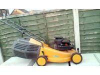 Petrol push lawnmower