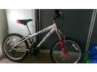 Raleigh MTB Bike Ali frame