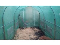 Used Green polley tunnel 4 meters by 3 meters only 6months old £120 brand new