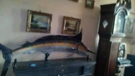 Fiber glass ornamental fish