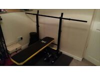 Everlast folding weight bench, barbell and 50KG weights.