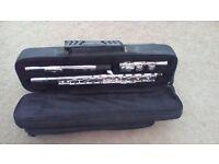 Stagg flute for sale - ideal for beginner