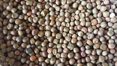 BJF Maple Peas 25kg