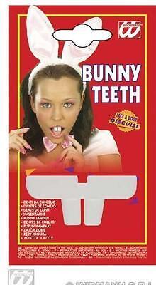 Teeth of RABBIT Costume Animal Man Woman Girl Child Boy NEW - Cheap Vampire Costumes
