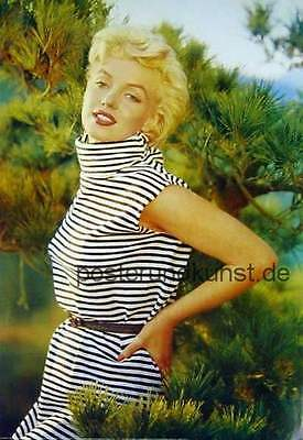 MARYLIN MONROE in Pinewoods Super Poster 98x68 cm