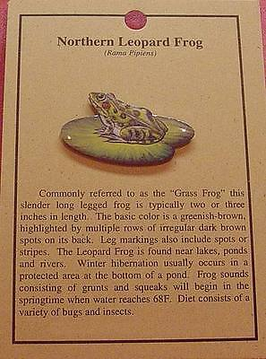 NORTHERN LEOPARD FROG  HAT  PIN LAPEL PINS (Frog Lapel Pins)