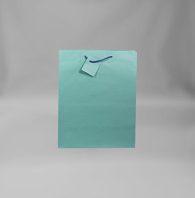 12 PC. Solid Color Light Blue Gift Bags Small - Bulk Gift Bags