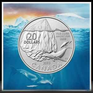 $20 for $20 ICEBERG & WHALE SILVER COIN