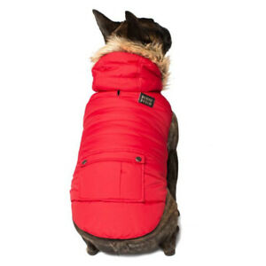 New Warm and Cozy Winter Dog Coats