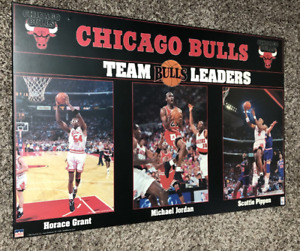 NBA Chicago Bulls Basketball Picture - Michael Jordan Era