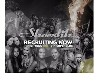 SGL recruiting Bar Staff / Floor staff / Waiters / Waitress for Shooshh nightclub Brighton