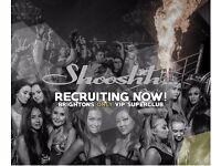 SGL recruiting Bar Staff / Floor staff / Waiters / Waitress for Shooshh nightclub Brighton