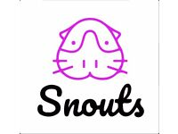 Snouts Small Animal Hotel - Luxury Boarding for your guinea pigs and rabbits