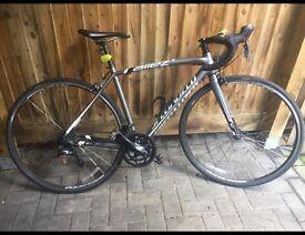 Mans specialize racer bike