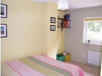 Good room in lovely house close to the river