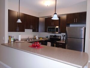 Modern 2drm suites with in-suite laundry start at $1460!