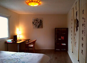 Sunny room with furniture and 4 parking 2nd floor $900 only