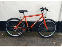 GENTS APOLLO MOUNTAIN BIKE