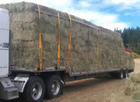 53' Aluminium Stepdeck Trailer with Ramps for sale