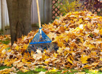 FALL / LEAF CLEANUP AVAILABLE (FREE ESTIMATES)