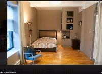Grande chambre meublée dans un condo (Berri-UQAM)