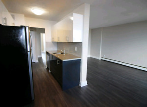 2 big bedroom appartment  for rent in Hamilton (1 month free)