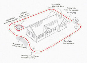 ISO USED PETSAFE WIRELESS OR IN GROUND FENCE SYSTEM