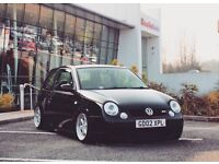 VW Lupo GTi, very low mileage! Custom show car!