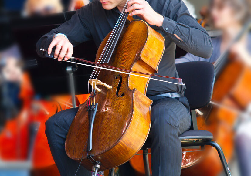 Top 3 Cello for Beginners