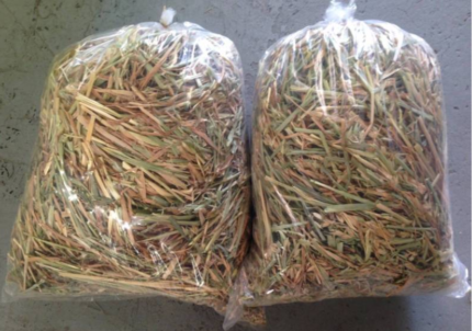 Bags of Hay (Various Styles- From $5)