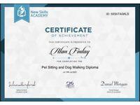 Dog Walker Pet sitter BALLYCLARE
