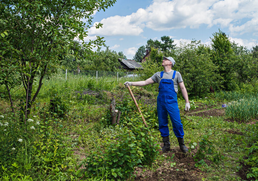 The Complete Guide To Gardening Clothing