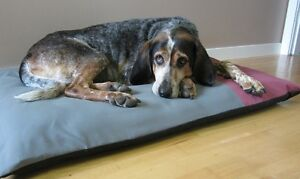 ecoOrthopedic Dog Mattresses