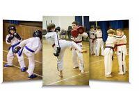 Martial Arts Instructor - 16-24k full time