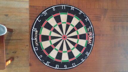Sports Dart board  Para Hills Salisbury Area Preview