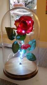 Disney's Beauty and the beast rose. REDUCED