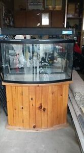 Large fish tank, stand, and lamp