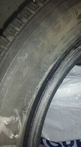 Winter Tires - excellent condition Kingston Kingston Area image 1