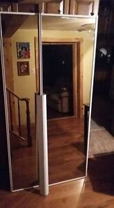 Frosted glass mirror doors